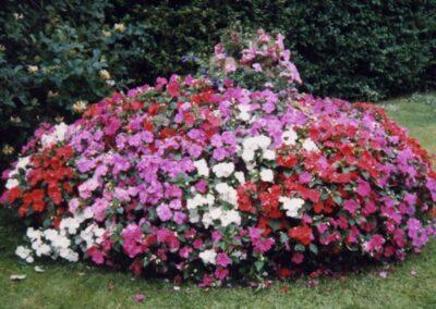 Beautiful flower mound