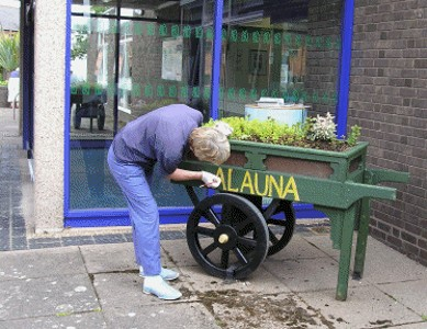 The Alauna flower cart